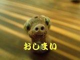 012917oshimai.jpg